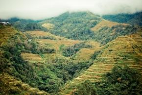 Banaue, Banawe, Ifugao, Igorot, Rice Terraces