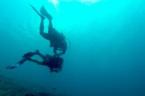 Dive and Trek, Anilao, Batangas, Scuba, Dive, Diving